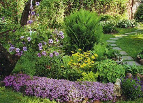 Parterre de fleurs à la campagne: 7 idées d'aménagement paysager