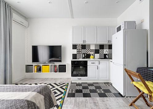 Studio apartman u skandinavskom stilu