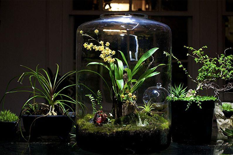 Florarium bricolage - Forêt tropicale