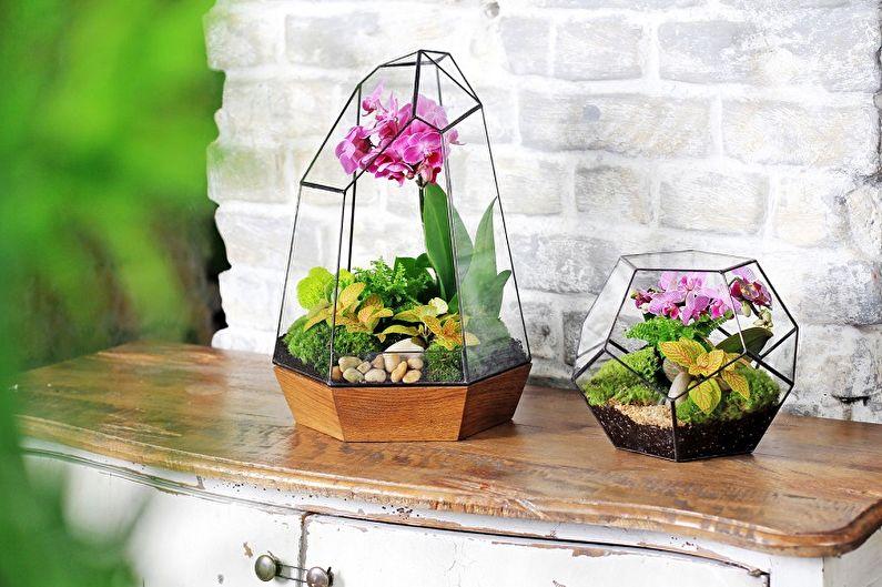 DIY Florarium - Orchidarium