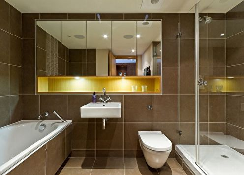 Miroir dans la salle de bain (85+ photos)