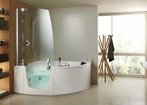 Rideaux en verre pour la salle de bain (50 photos)